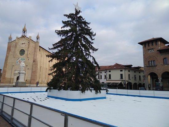 Cinta muraria: Montagnana: Duomo e Piazza