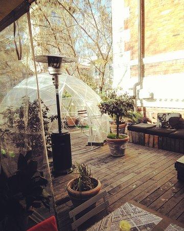 Igloo Picture Of Astoria Cafe Rome Tripadvisor