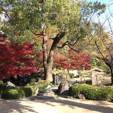 Gokurakujyodo Garden of Paradise