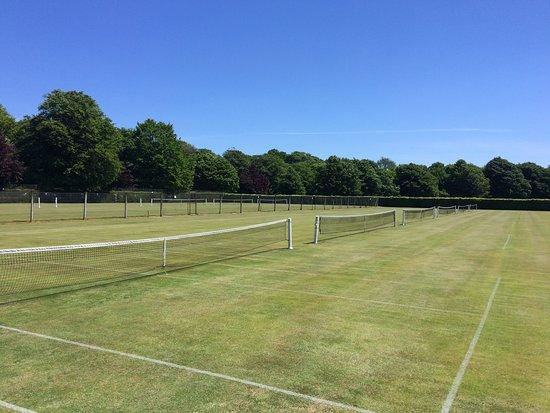 TKHP Tennis Club