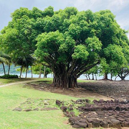 Acabei de conhecer o local mais sagrado em toda Polinésia, o equivalente a Jerusalém para eles.😘👍🙏