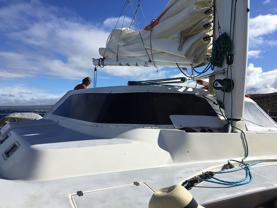 Molokini Snorkel and Performance Sail from Ma'alaea Harbor: Snorkeling and sailing trip to Molokini