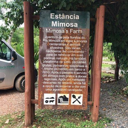 Фотография Estancia Mimosa Ecoturismo