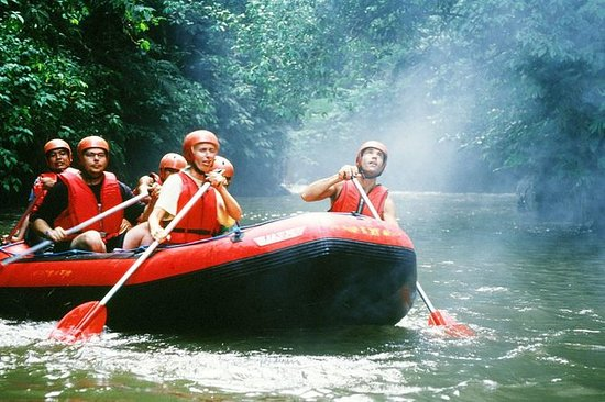 Bali White Water Rafting All...