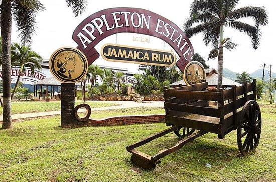 Appleton Estate Rum Tour og smaker...