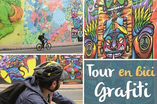 Halvdag Graffiti-Bike Tour: La...