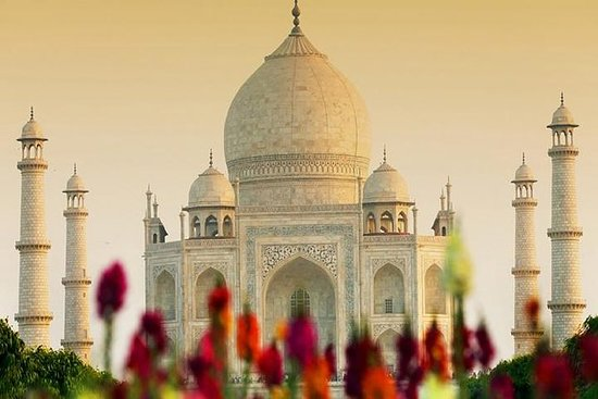 Taj Mahal Tour by Train with Lunch at...
