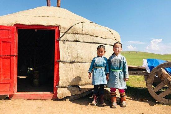 Mongolsk nomadisk show og Khustai...
