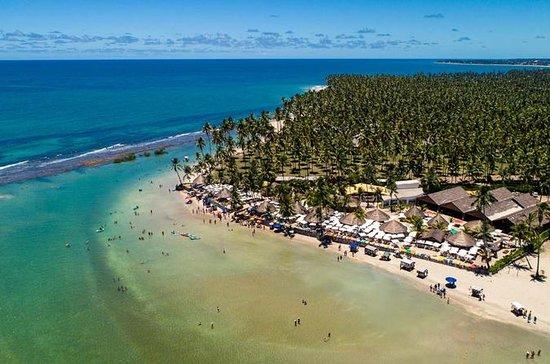 Utrolig Carneiros Beach - fra Maceió