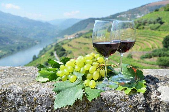 Tour del vino della Valle del Douro