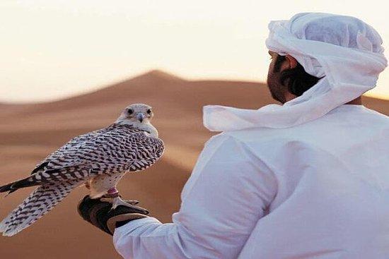 Arabian Desert Experience In Dubai