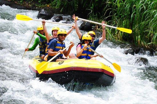 Bali Alam Rafting