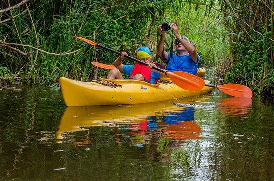 Danubio Delta Kayak Tours, Tulcea...