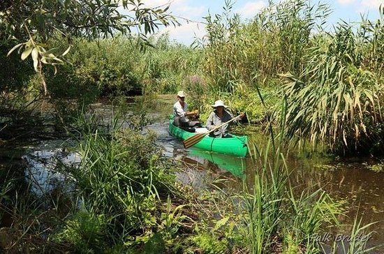 Danube Delta Guided CANOEING Tour...