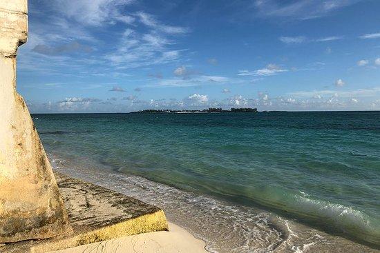 Visite intime et amusante de Nassau...