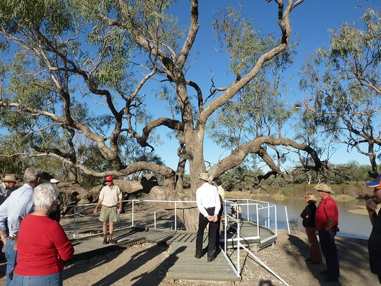 Travel West: Hear the story of explorers Burke & Wills and visit the famous Dig Tree near Innamincka.