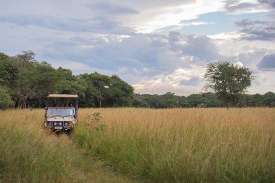 Lilayi Lodge: Safari Game Drive