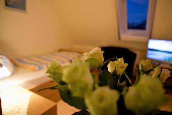Снимок Gasthaus-Pension Zum Elbblick