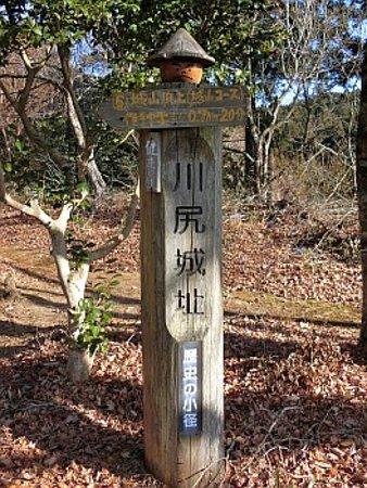 Zdjęcie Shinshiro