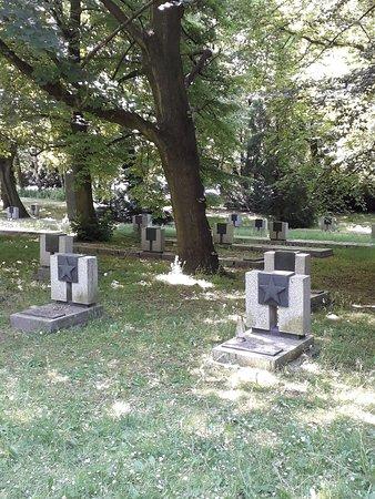 Cmentarz Bohaterow Radzieckich