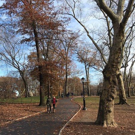 Центральный парк: Central Park