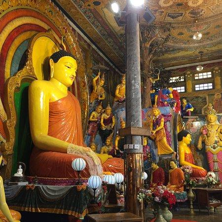 Meishuo Lanka Tours