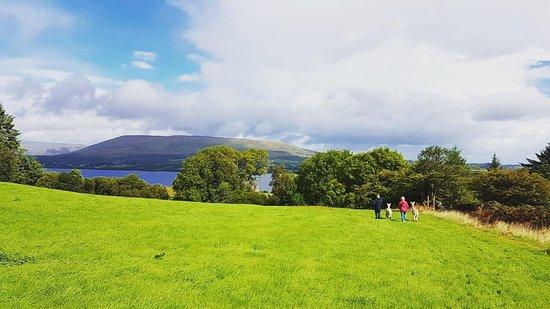 Oughterard, Ireland: Alpaca Walk