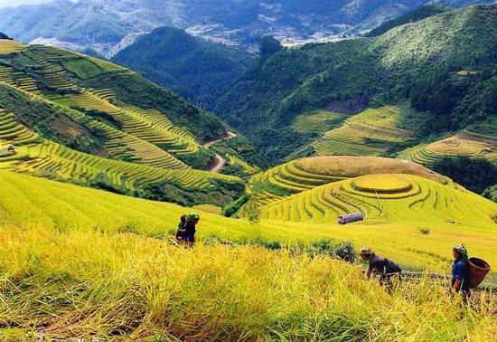 Vietnam Authentic Travel