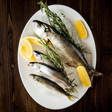 Fresh seafood fish