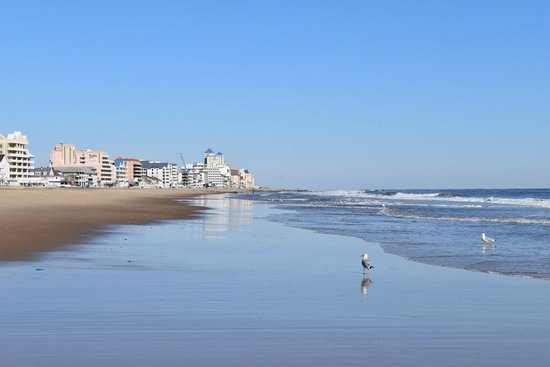 Оушен-Сити, Мэриленд: Ocean City in the winter -- no vacationers, only a few seagulls on the beach.