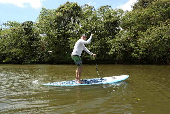 Oahu's North Shore, HI: Stand-Up Paddling (SUP) on the North Shore's Haleiwa River!