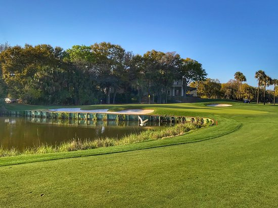 You may not make any birdies on this Nicklaus design, but there is nevertheless plenty of birdlife on Kiawah Island.