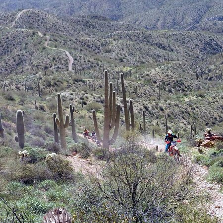 Arizona Dirt Bike Rentals