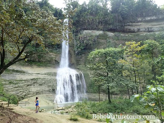 Bohol Province, Filipinas: Bohol tour higher waterfall