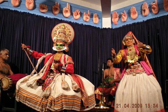 Privat tur: Kochi City Tour og...