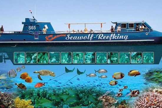 Snorkling på Sharm El Naga Fra El...