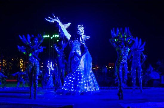 Los Cabos: Wirikuta Show Experience: Wirikuta show & dinner experience