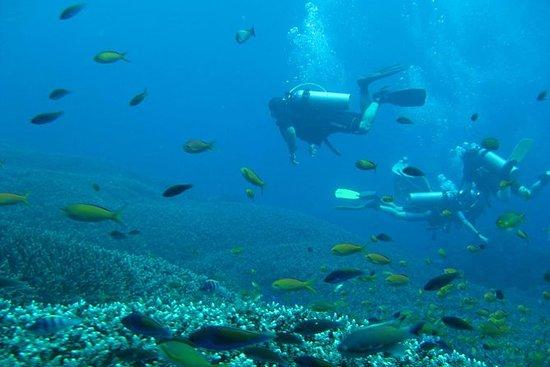 Private Adventure - Nusa Dua Dive