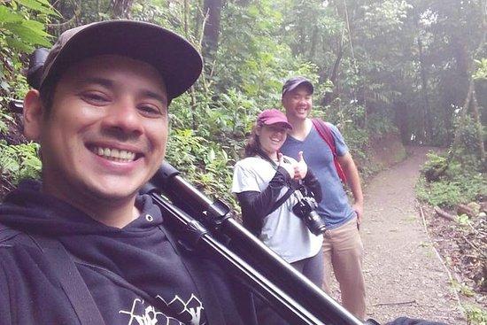 Promenade dans la réserve biologique...