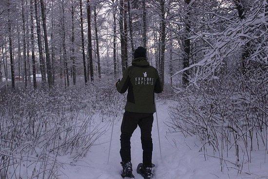 Raquettes neige