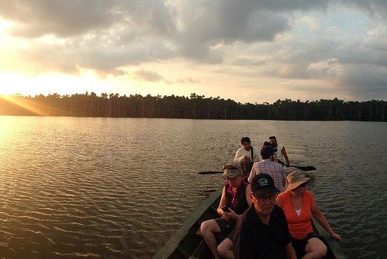 River by Night: Jungle Night turné