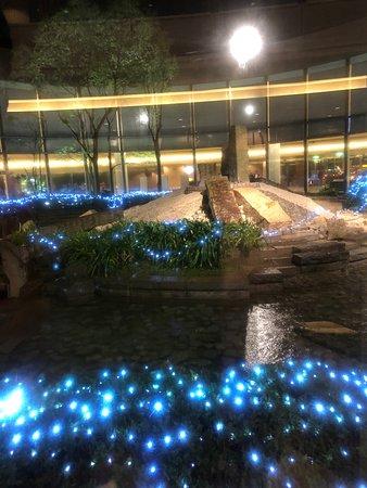 Hilton Tokyo Narita Airport Hotel: Center rock garden and fountains
