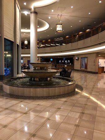 Hilton Tokyo Narita Airport Hotel: Fountain in lobby area