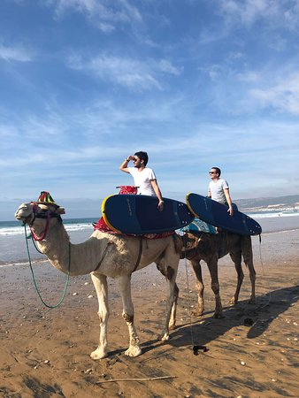 Adrenalin Surf Maroc
