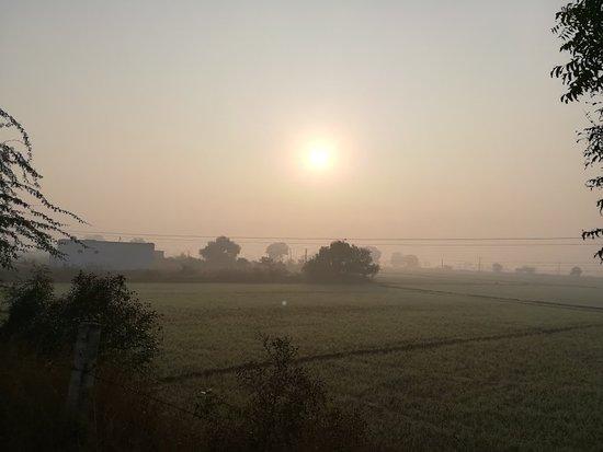 Bilde fra Haryana