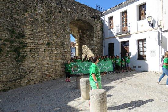 Puerta de Almocabar: de poort