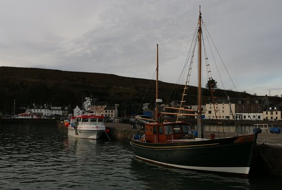 Full-Day Highland Mystery Tour from Aberdeen: Boats in Stonehaven Harbour