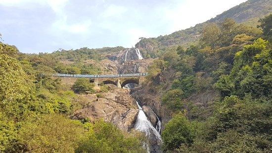 Mollem National Park Photo