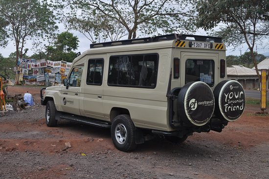 Tanzania Simba Safari - 5 Days: Easy Travel truck. Very comfortable.