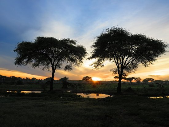 Spirited Adventures: Sunrise, Greater Kruger National Park, South Africa